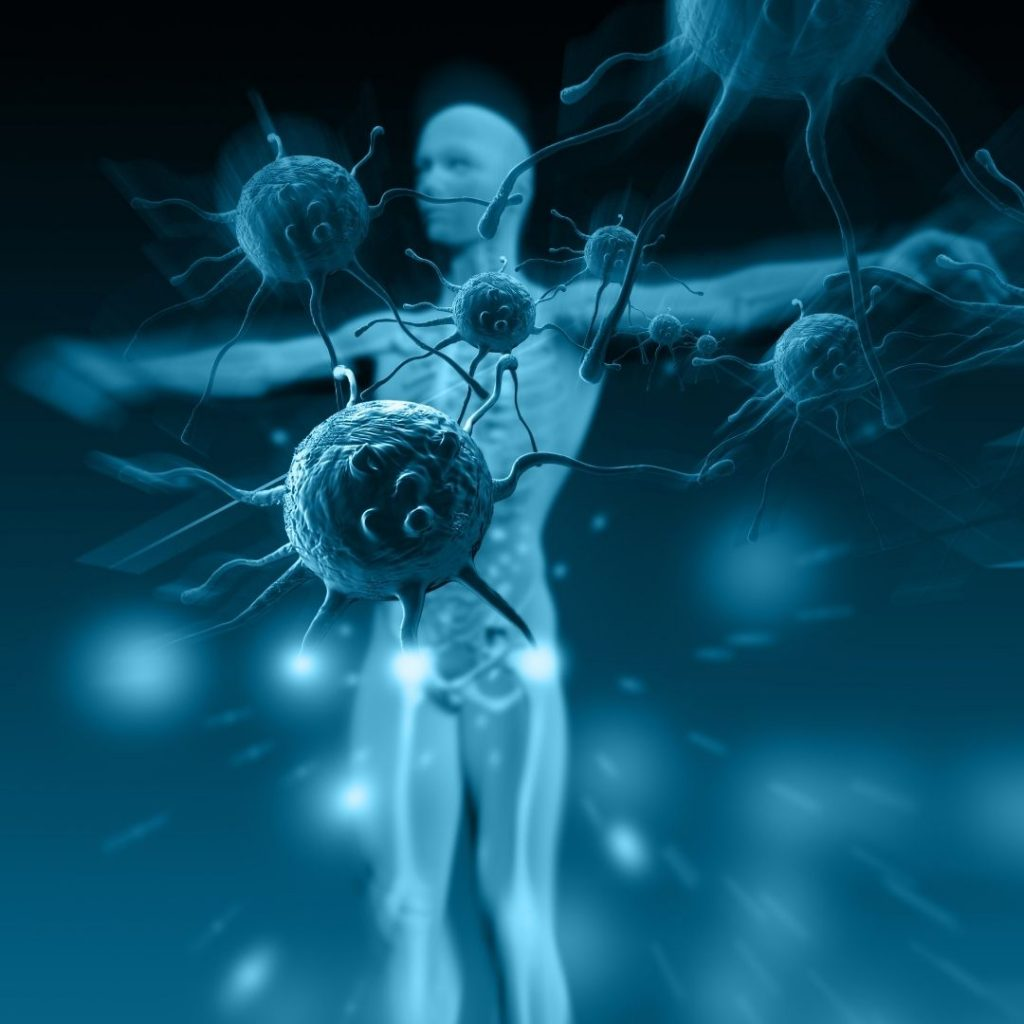 1. A Cardiovascularis Rendszer Tünettana: Az anamnézis sajátos elemei