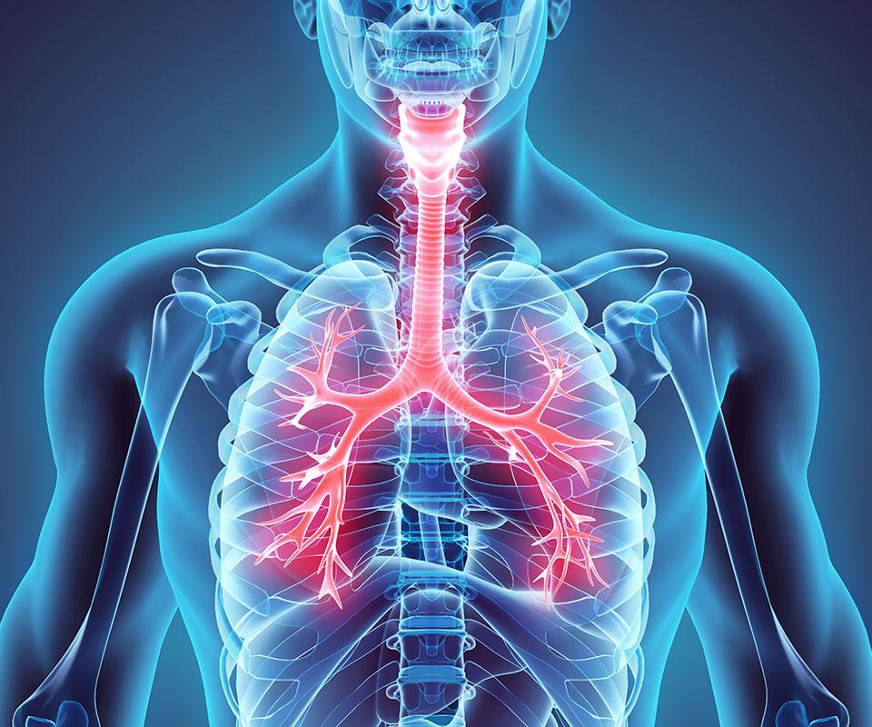 COVID-19 – Układ oddechowy