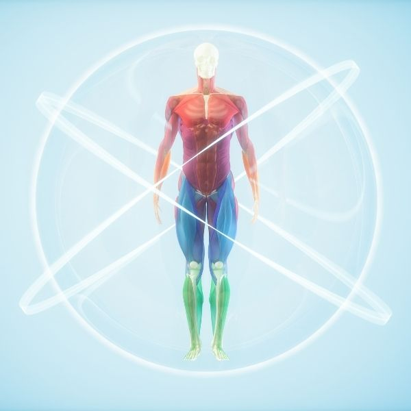 Homeostaza w leczeniu AZS, czyli równowaga i samoleczenie organizmu