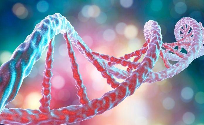 Czynniki genetyczne otyłości u dzieci