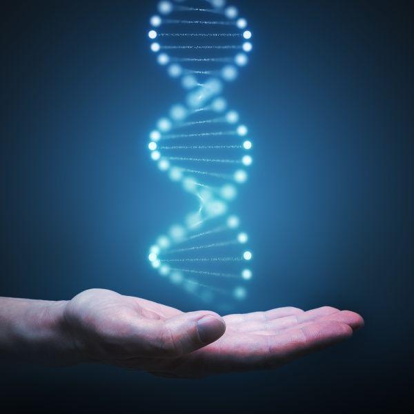 Odchudzanie genetyczne – jak schudnąć bez ćwiczeń dzięki personalizacji diety?
